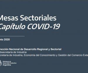 Min. de Desarrollo Productivo – Subsecretaría de Industria. CAEHFA participa de la apertura de la Mesa Sectorial de Tecnología Médica.