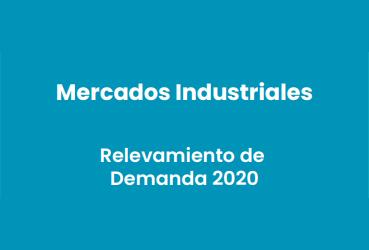 """Ministerio de Relaciones Exteriores Comercio Internacional y Culto Subsecretaría de promoción del Comercio e Inversiones """"Presentación del Relevamiento de la Demanda 2020 de Mercados Industriales"""""""